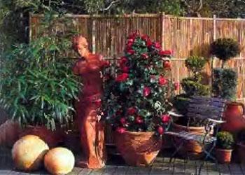 Растения и кустарники для живой изгороди 9