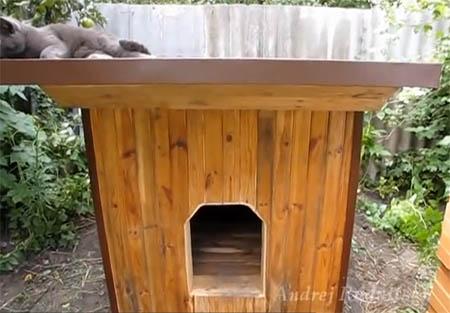 Теплая собачья будка