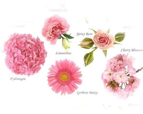Цветы по цветам