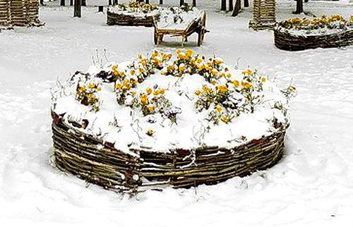 Альпийская горка зимой