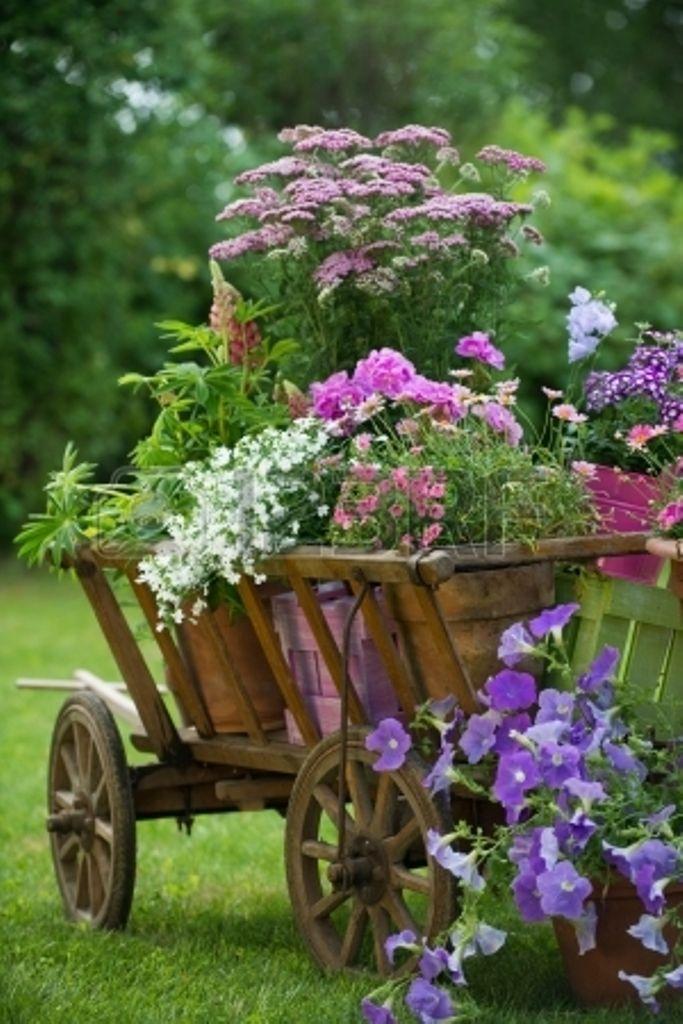Клумба с цветами на даче