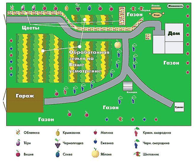 Пример планировки сада на даче