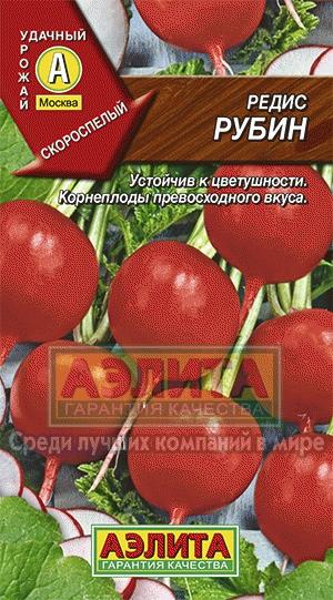 Скороспелый сорт редиса Рубин