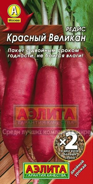 Позднеспелый сорт редис Красный Великан