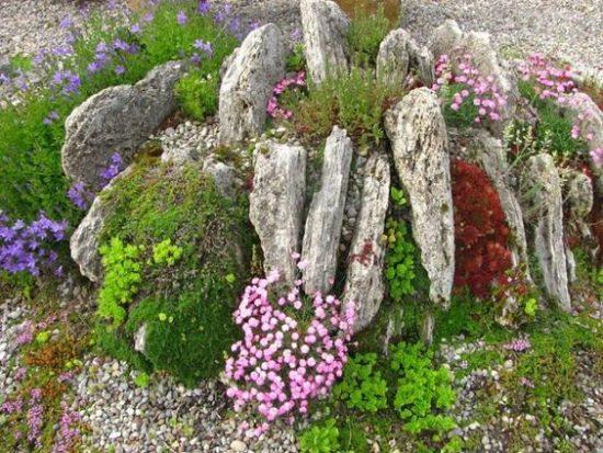 Альпийская Горка на Даче Своими Руками с Камнями — 44 фото
